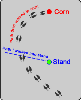 WeHuntSC.com - Deer Walk Diagram
