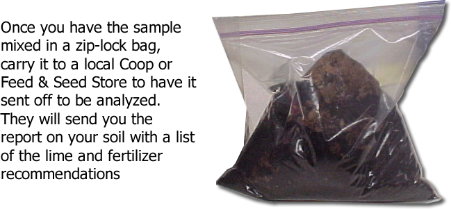 WeHuntSC.com - Food Plot Journey - Ziploc Bag Image