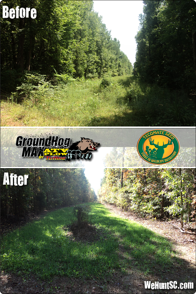 WeHuntSC.com - Before & After Pic