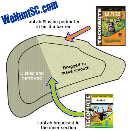WeHuntSC.com - Tecomate Seed Food Plot Journey - Food Plot Location 1 - Diagram of the Field