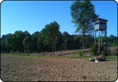 WeHuntSC.com - Tecomate Seed Food Plot Journey - Food Plot Location 1 - Deer Stand beside food plot at planting
