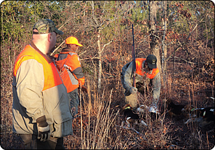 WeHuntSC.com - Rabbit Hunters in the woods