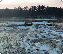 WeHuntSC.com - Snowcovered Duck Blinds