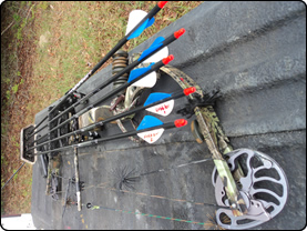 WeHuntSC.com - The bow and arrows on the tail gate
