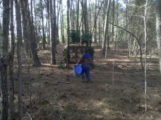 WeHuntSC.com - Marcus baiting the hogs