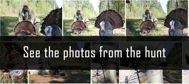 WeHuntSC.com - The photo album of the gas-line gobbler