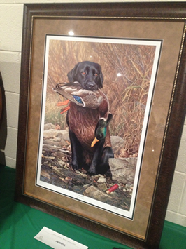 Lancaster County Ducks Unlimited Lab Print