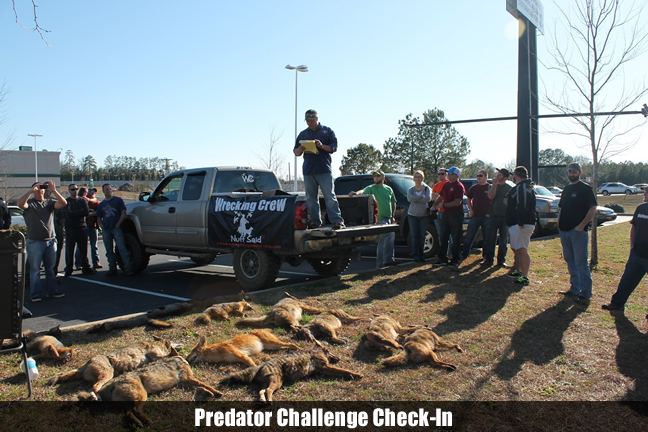 Predator Challenge Check-In