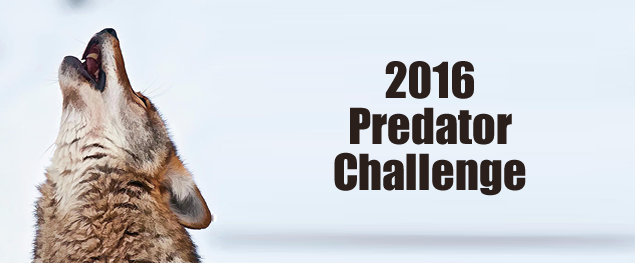 Announcing the 2016 Predator Challenge
