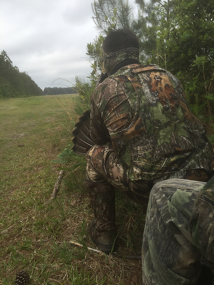 Stalk-hunting turkey pic