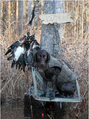 WeHuntSC.com - Waterfowl Finalist John Shell
