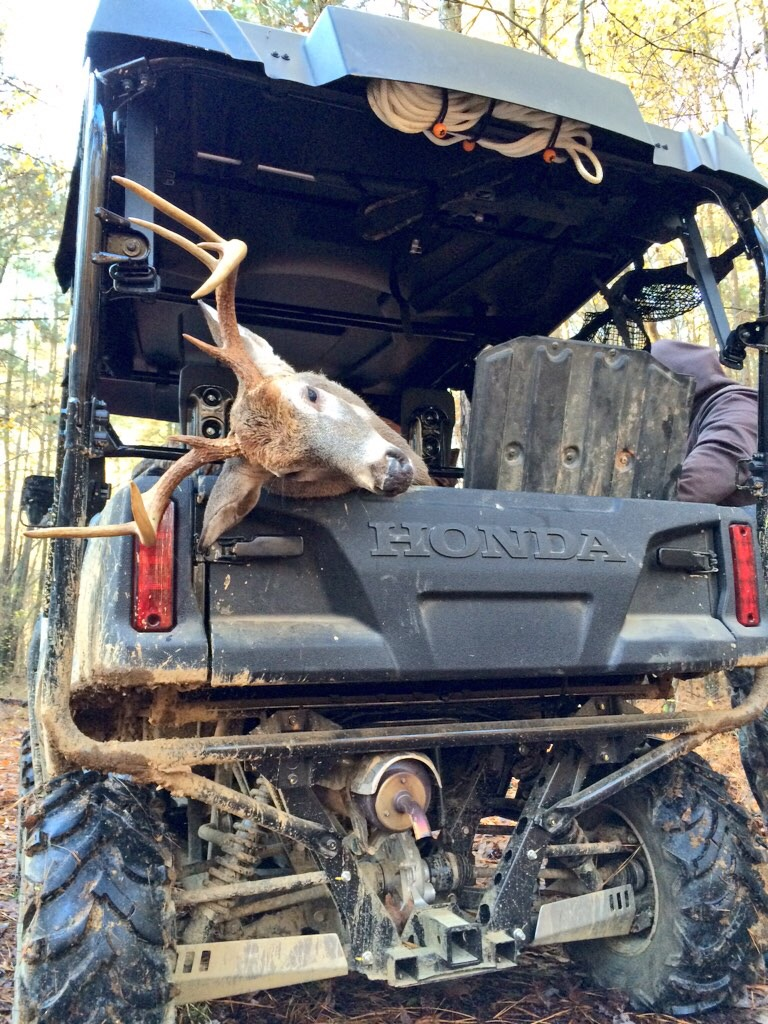 Clint Patterson's Thanksgiving 9-Point Buck In Honda Pioneer